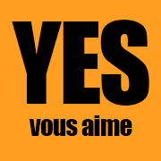 YES VOUS AIME