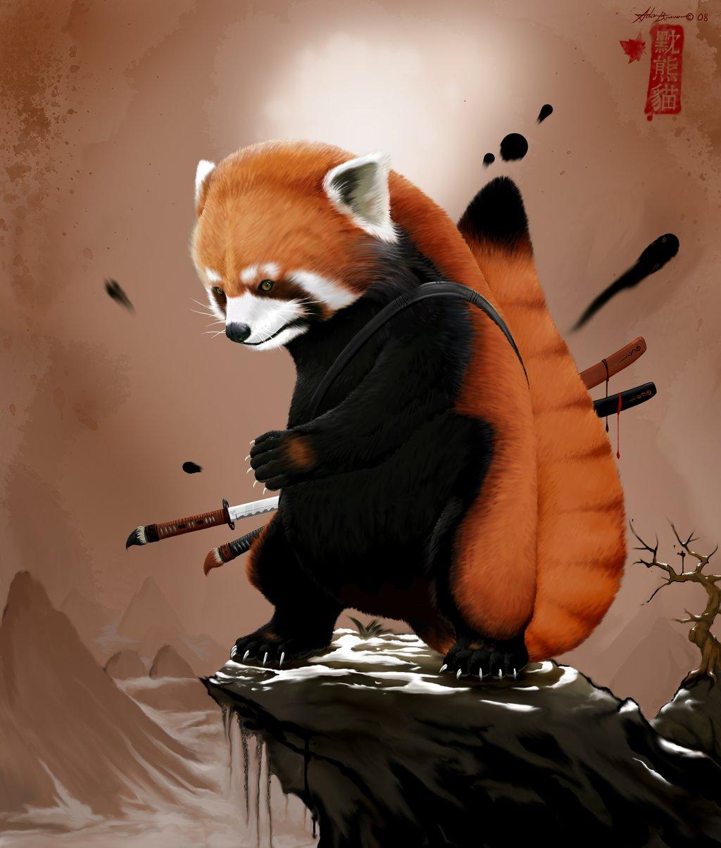 Radeck Le Panda Roux